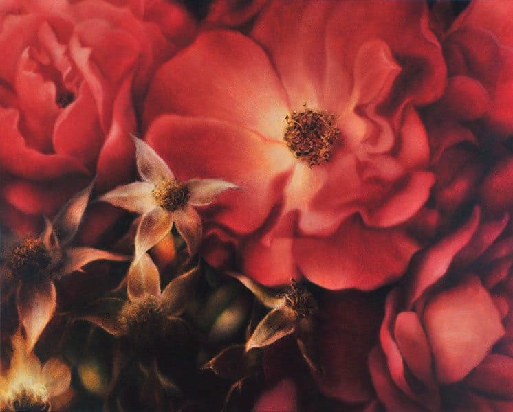 Christine Johnson - Persian Roses (2009)