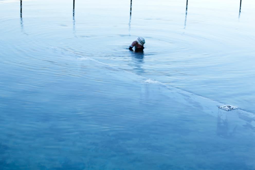 Wayne Fogden - Bronte Pool 14 (2010)