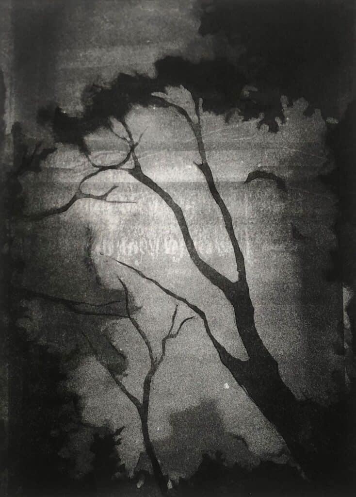 Charlotte Watson<br><em>Nightwalk 2</em>, 2020<br>Monotype on Somerset paper<br>22 cm by 29.5 cm<br>$1100